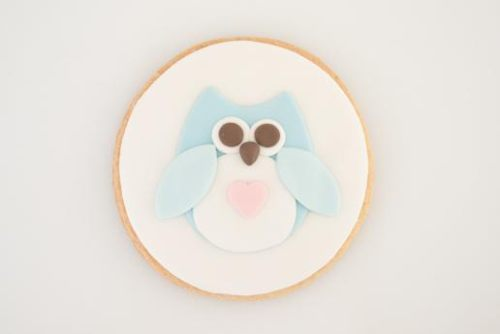 paso a paso galletas decoradas con animales